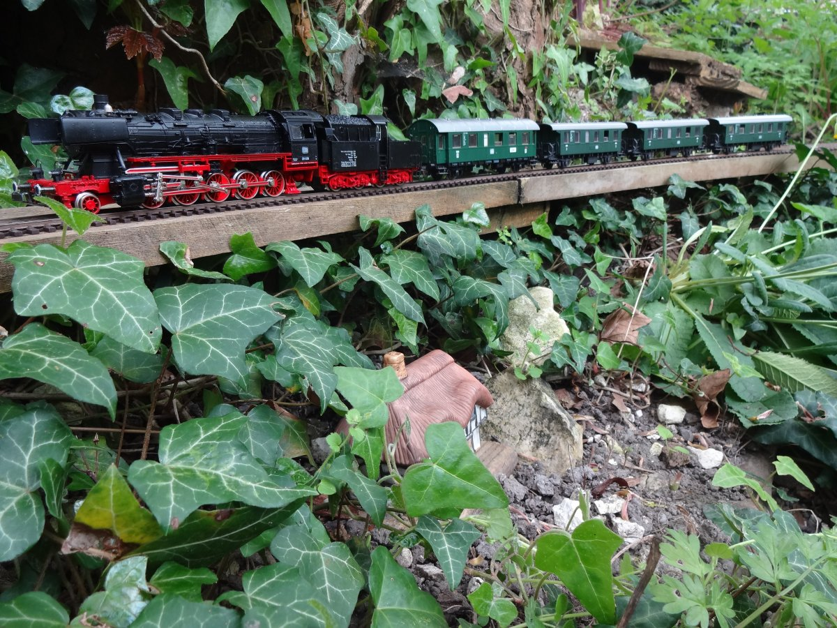 A 2-10-0 makes light work of this rural passenger service