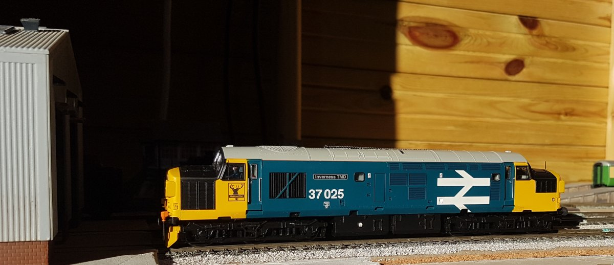 37025 on shed
