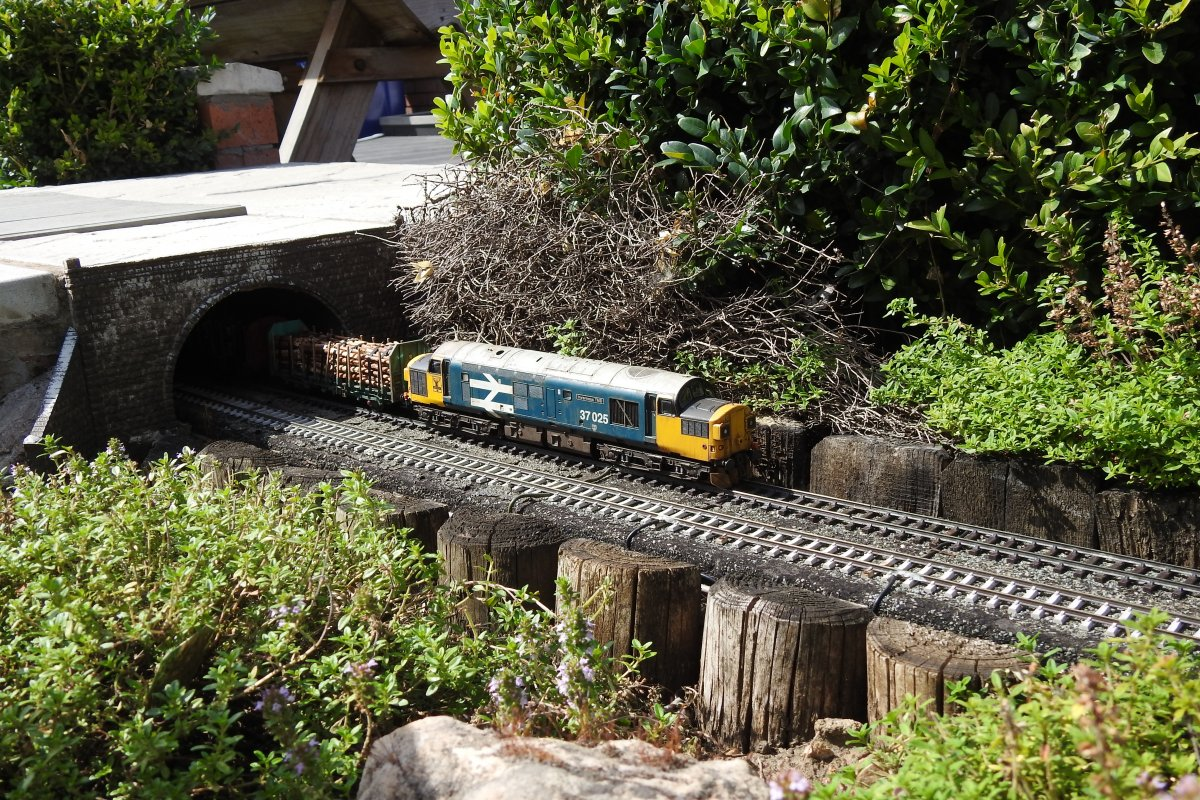 37025 emerges from Watch House tunnel