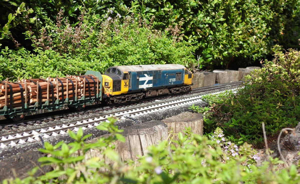 37025 passing Watch House tunnel