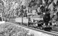 """King Willaim IV"" on milk train, early 1960s"