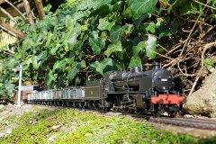 Garden Railway Views