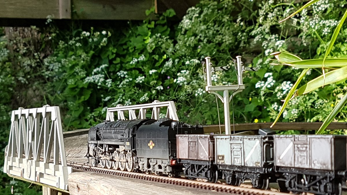 9F and cow parsley