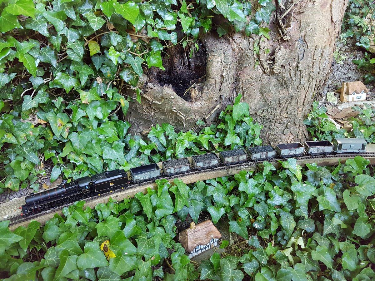 Black Ghyll & short coal train